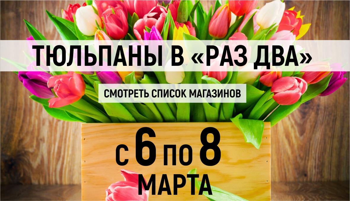 Тюльпаны в «Раз Два»